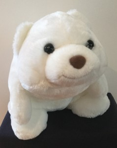 Snuffles lives for fashion and loves to be a cute polar bear and comment on global warming.